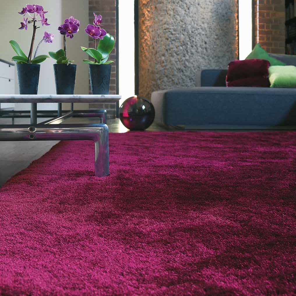Tapis prune Tapis salon prune